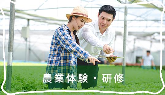 農業体験・研修
