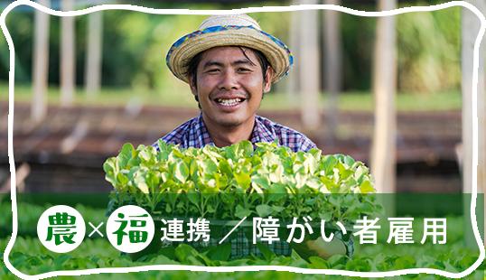 農×福連携/障害者雇用
